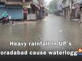 Heavy rainfall in UP's Moradabad cause waterlogging