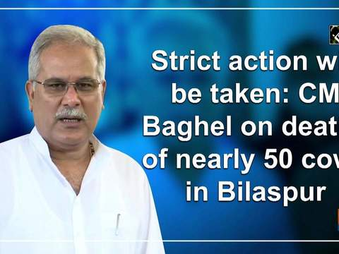 Strict action will be taken: CM Baghel on deaths of nearly 50 cows in Bilaspur
