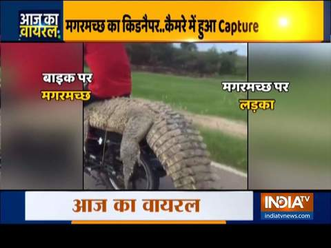 देखिए इंडिया टीवी का स्पेशल शो आज का वायरल | 13 अक्टूबर, 2020