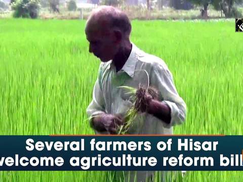 Several farmers of Hisar welcome agriculture reform bills