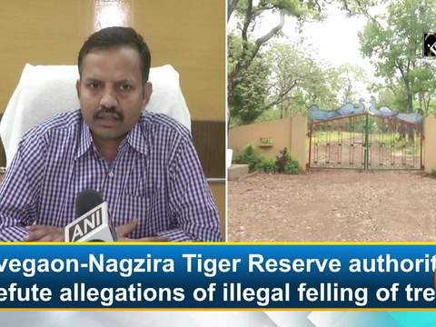 Navegaon-Nagzira Tiger Reserve authorities refute allegations of illegal felling of trees