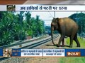 Plan Bee: Indian Railways' unique initiative to prevent trains from hitting elephants