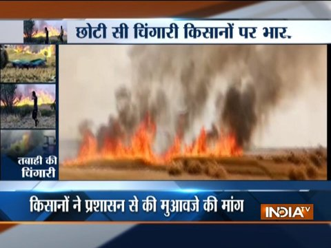 Farmers suffer huge loss as fire breaks out in Punjab, Haryana and Uttar Pradesh; damages crops
