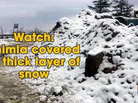 Watch: Shimla covered in thick layer of snow