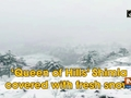 'Queen of Hills' Shimla covered with fresh snow