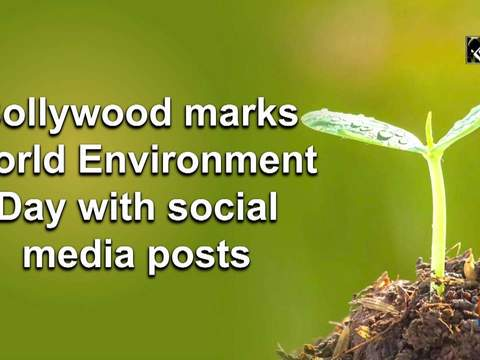 Bollywood marks World Environment Day with social media posts