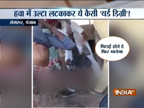 पंजाब के संगरूर में दो लोगों को उलटा लटका डंडे से की पिटाई, वीडियो हुआ वायरल