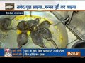 Special show on Karni Mata – The Rat Temple of Rajasthan