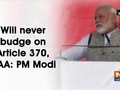 Will never budge on Article 370, CAA: PM Modi