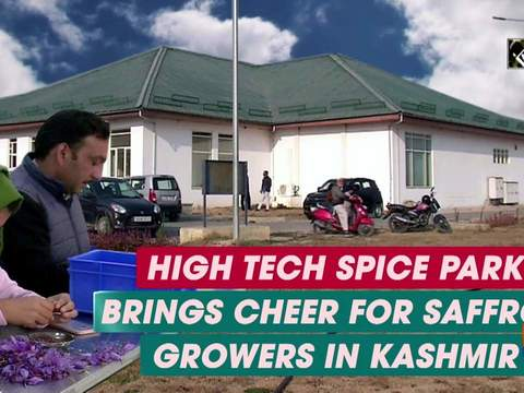 High tech Spice Park brings cheer for saffron growers in Kashmir