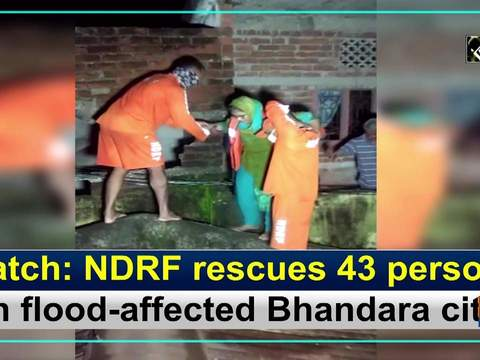 Watch: NDRF rescues 43 persons in flood-affected Bhandara city