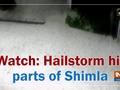 Hailstorm hit parts of Shimla