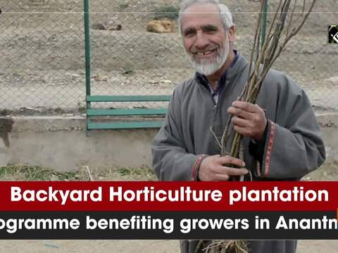 Backyard Horticulture plantation programme benefiting growers in Anantnag