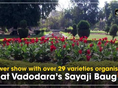 Flower show with over 29 varieties organised at Vadodara's Sayaji Baug