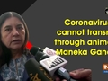 Coronavirus cannot transmit through animals: Maneka Gandhi