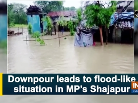 Downpour leads to flood-like situation in MP's Shajapur