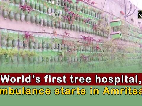 World's first tree hospital, ambulance starts in Amritsar