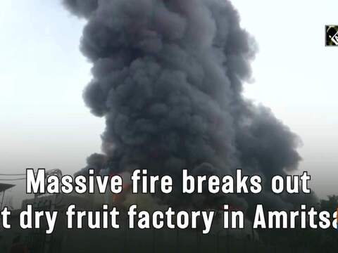 Massive fire breaks out at dry fruit factory in Amritsar