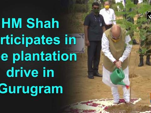 HM Shah participates in tree plantation drive in Gurugram