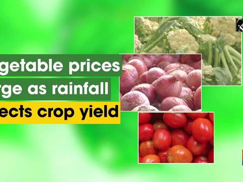 Vegetable prices surge as rainfall affects crop yield