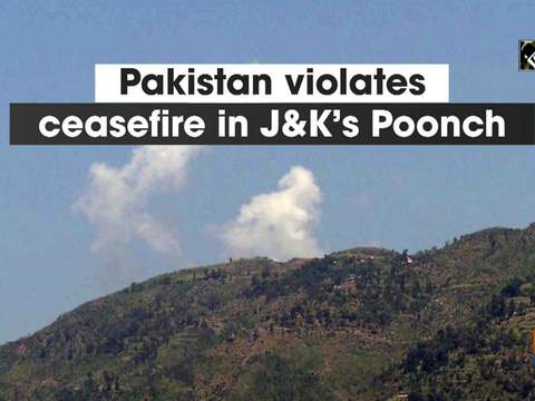 Pakistan violates ceasefire in J-K's Poonch