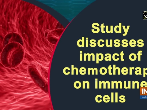 Study discusses impact of chemotherapy on immune cells