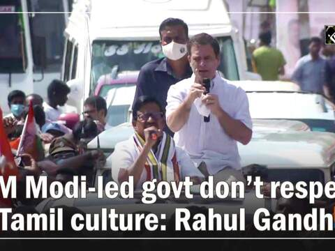 PM Modi-led govt don't respect Tamil culture: Rahul Gandhi