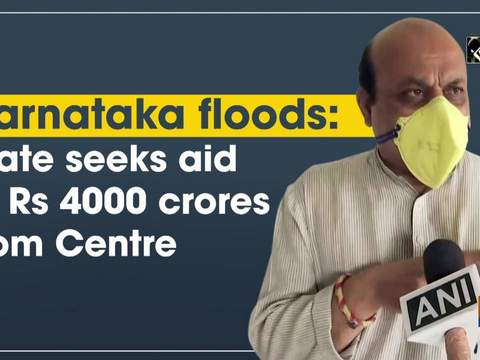 Karnataka floods: State seeks aid of Rs 4000 crores from Centre