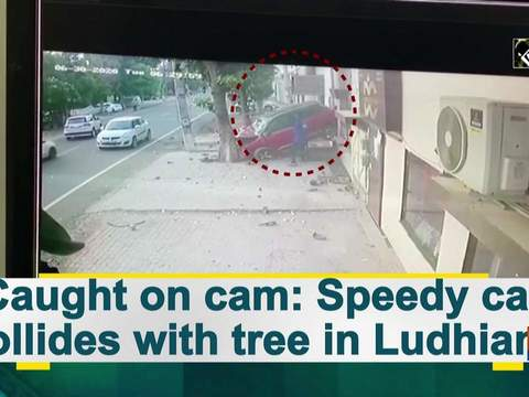 Caught on cam: Speedy car collides with tree in Ludhiana