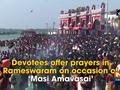 Devotees offer prayers in Rameswaram on occasion of 'Masi Amavasai'
