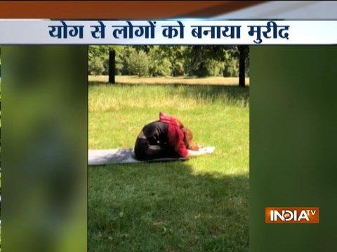 International Yoga Day: Actress Kangana Ranaut performs various Yogasanas