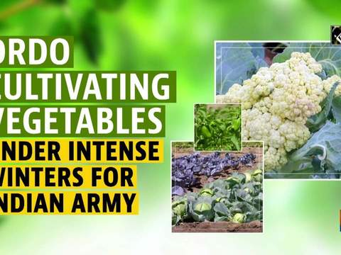 DRDO cultivating vegetables under intense winters for Indian Army