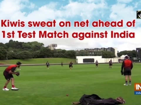 Kiwis sweat on net ahead of 1st Test Match against India