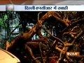 Special Report on devastating thunderstorm in Delhi, UP