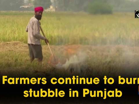 Farmers continue to burn stubble in Punjab