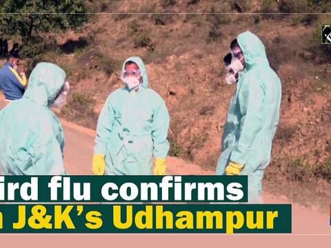 Bird flu confirms in J&K's Udhampur