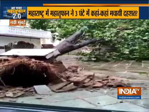 Watch: Huge tree collapses amid damage caused by Cylcone Nisarga