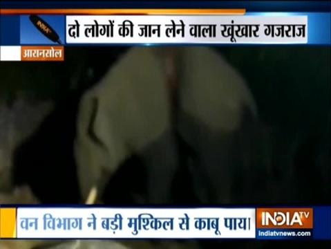 पश्चिम बंगाल के आसनसोल में हाथी की चपेट में आने से दो की मौत