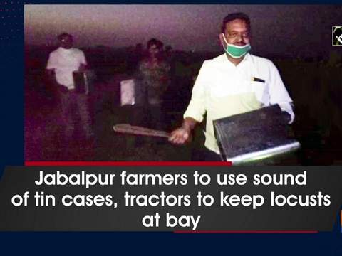 Jabalpur farmers to use sound of tin cases, tractors to keep locusts at bay