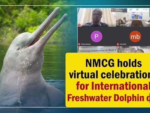 NMCG holds virtual celebrations for International Freshwater Dolphin day