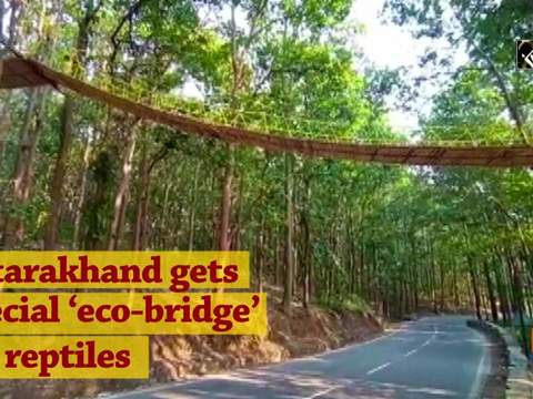 Uttarakhand gets special 'eco-bridge' for reptiles