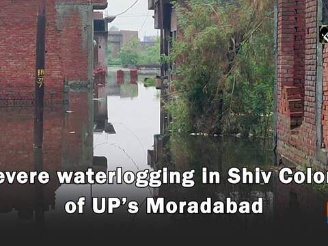 Watch: Severe waterlogging in Shiv Colony of UP's Moradabad