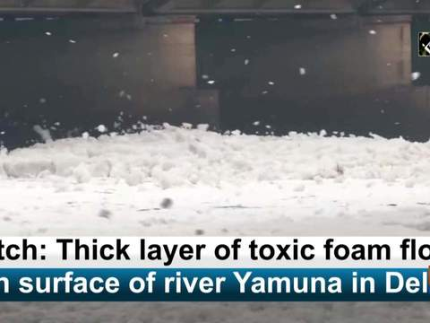 Watch: Thick layer of toxic foam floats on surface of river Yamuna in Delhi