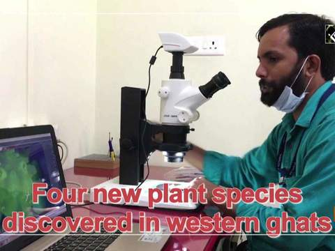 Four new plant species discovered in western ghats