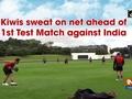 Kiwis sweat on net ahead of 1st Test Match against India