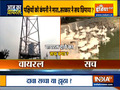 Aaj Ka Viral: People contacting bird deaths to Jio 5G trial goes viral