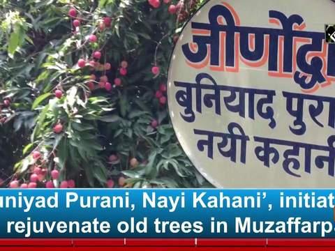 'Buniyad Purani, Nayi Kahani', initiative to rejuvenate old trees in Muzaffarpur