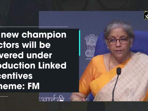 10 new champion sectors will be covered under Production Linked Incentives scheme: FM Sitharaman