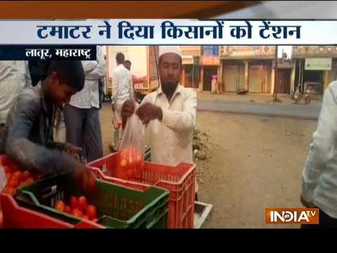 Maharashtra: No buyers for tomatoes, farmers give it away for free