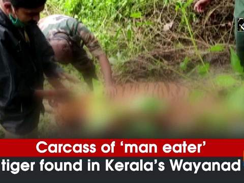 Carcass of 'man eater' tiger found in Kerala's Wayanad